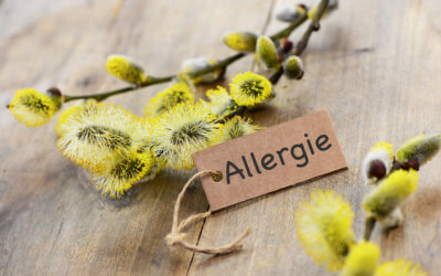 PROTECT YOURSELF FROM HAY FEVER BEFORE SUMMER BEGINS