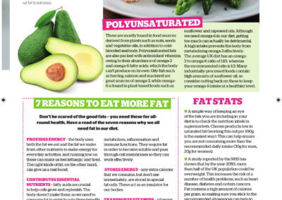 Fats - Healthydiet mag x2